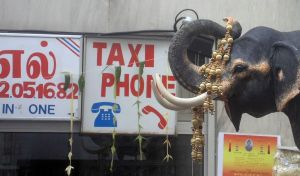 Ganesh 116